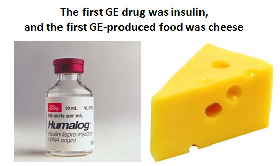 Insulin and cheese
